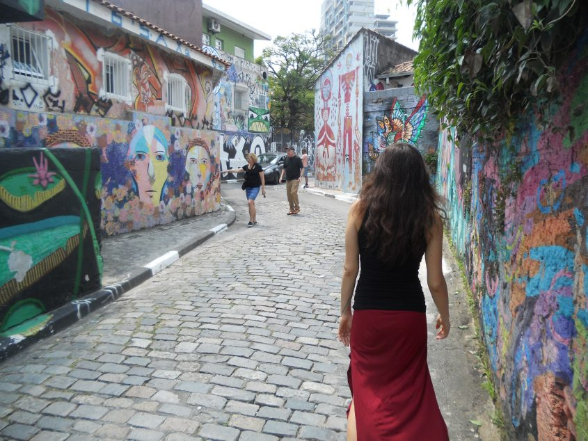 Passeggiata tra i murales di Vila Madalena a San Paolo in Brasile