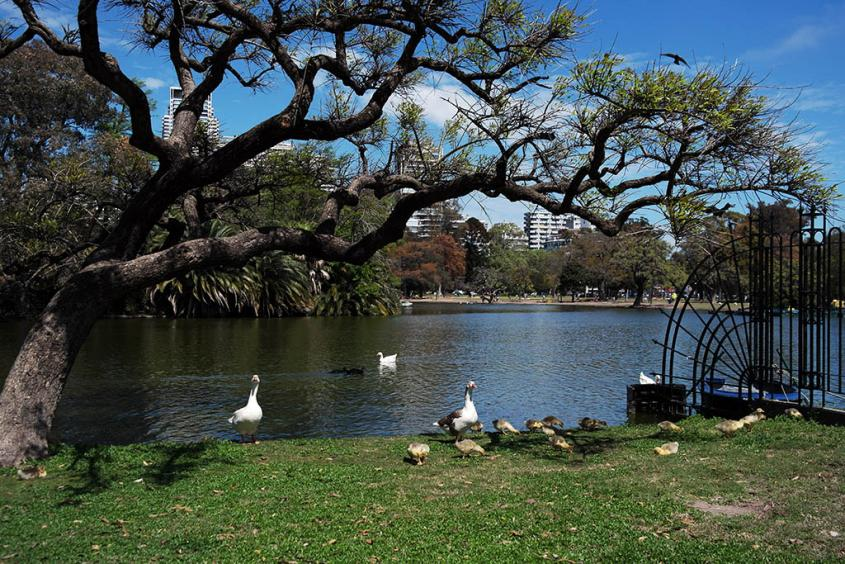Parque 3 de Febrero a Buenos Aires