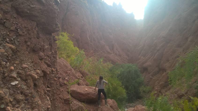 Escursione a cavallo al Canyon dell'Inca nella città di Tupiza in Bolivia