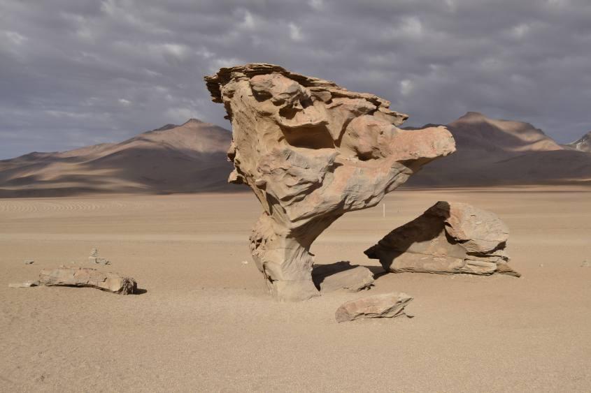 Albero di pietra all'interno del deserto di Siloli durante il tour al Salar di Uyuni