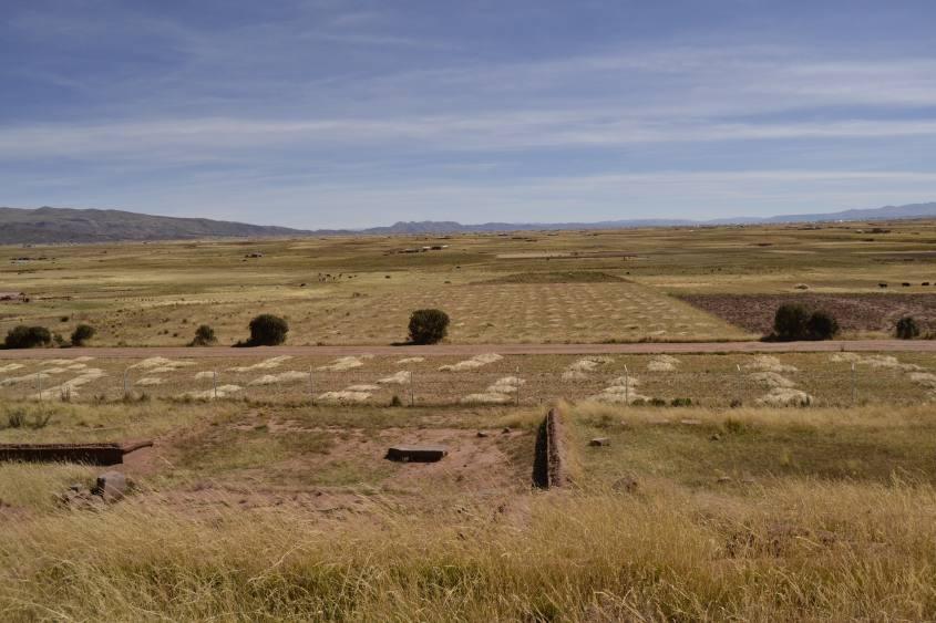 Paesaggio pianeggiante dall'interno di Tiwanaku in Bolivia