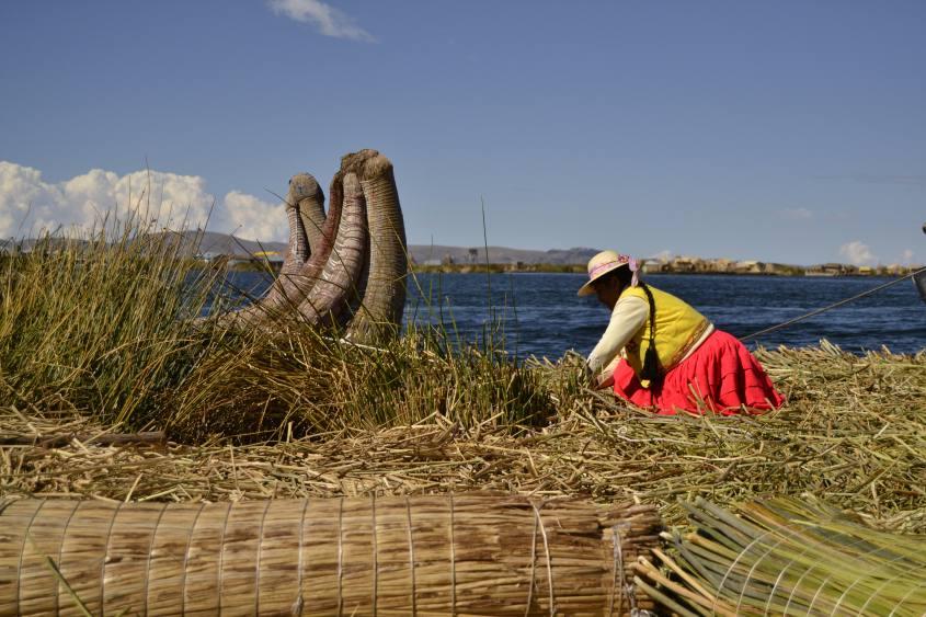 Signora Uros alle prese con la Totora sulle Isole Galleggianti (Islas Flotantes) in Perù