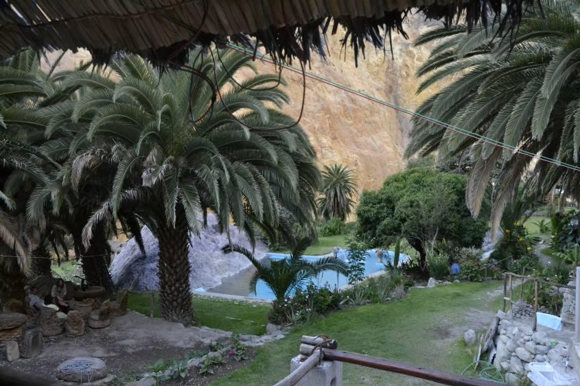 Oasi verde con piscina all'interno del Canyon del Colca