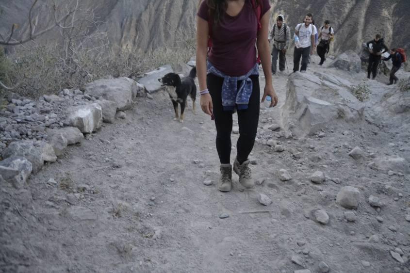 Secondo giorno di trekking in salita all'interno del Canyon del Colca in Perù