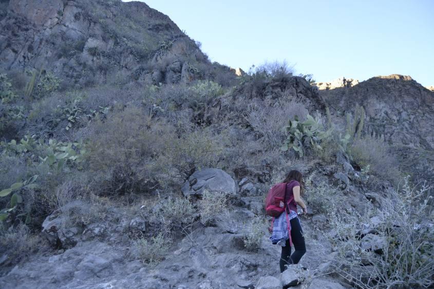 Secondo giorno di trekking in salita all'interno del Canyon del Colca