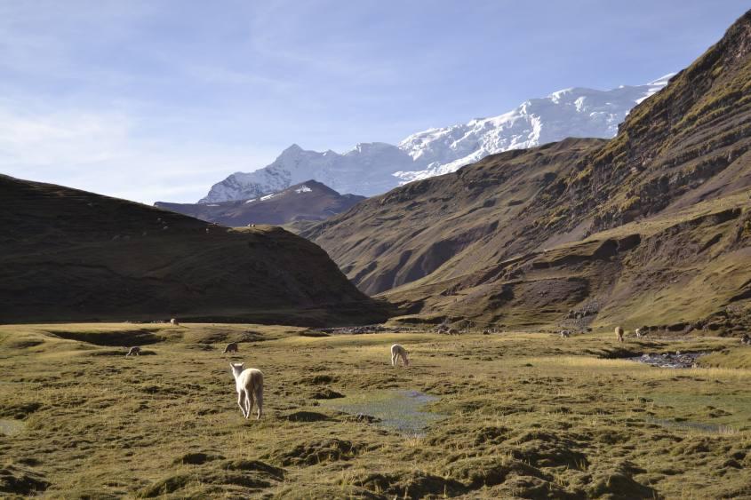 Vista dal trekking montagna Vinicunca in Perù