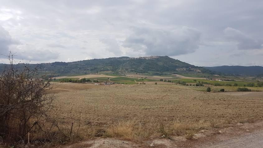 Val d'Orcia e Montalcino in lontananza