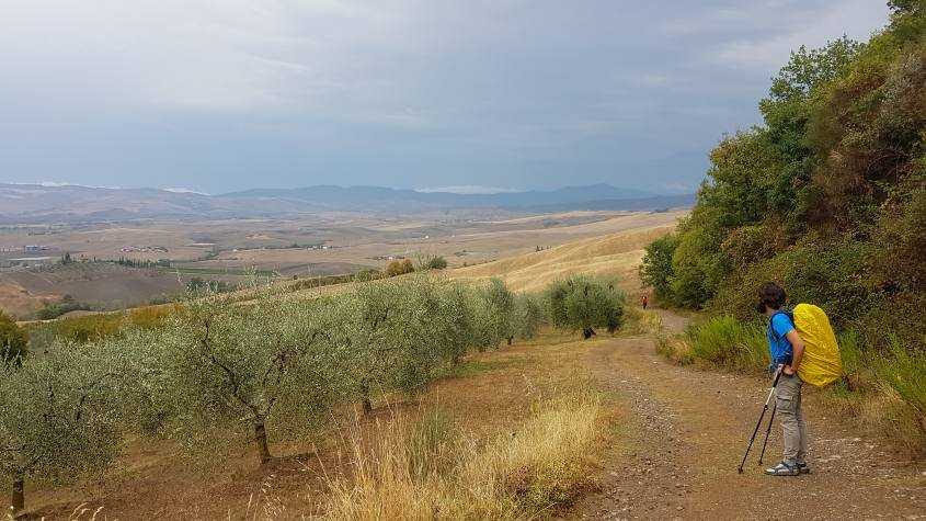 Campagna di Castiglione d'Orcia Via Francigena