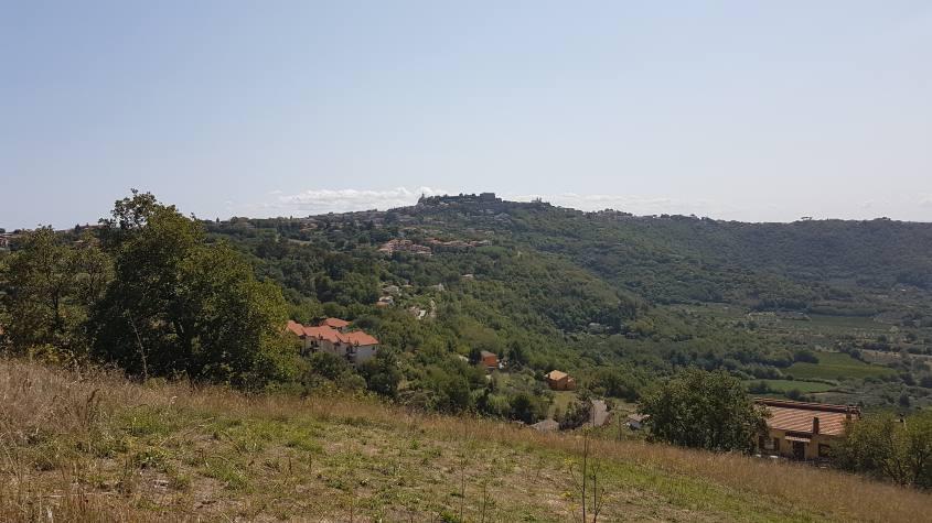 Vista Montefiascone Via Francigena