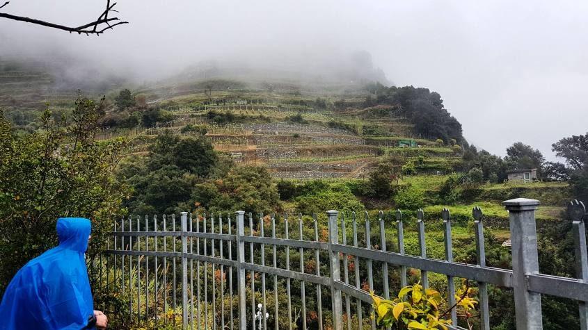 Trekking al sentiero azzurro delle Cinque Terre da Monterosso a Vernazza
