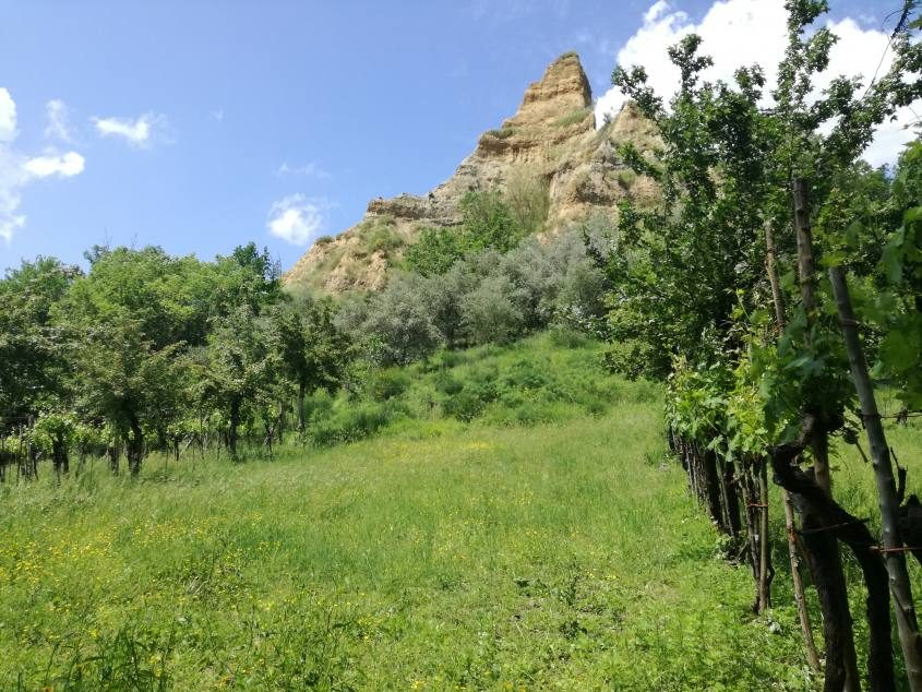 Percorso delle Fossate nell'Area Protetta delle Balze di Castelfranco di Sopra