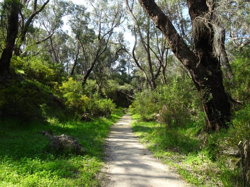 Strada del percorso Wetlands