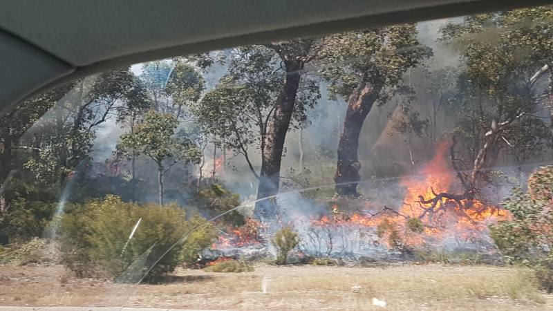 Incendio boschivo (Bushfire) durante On the Road in Australia