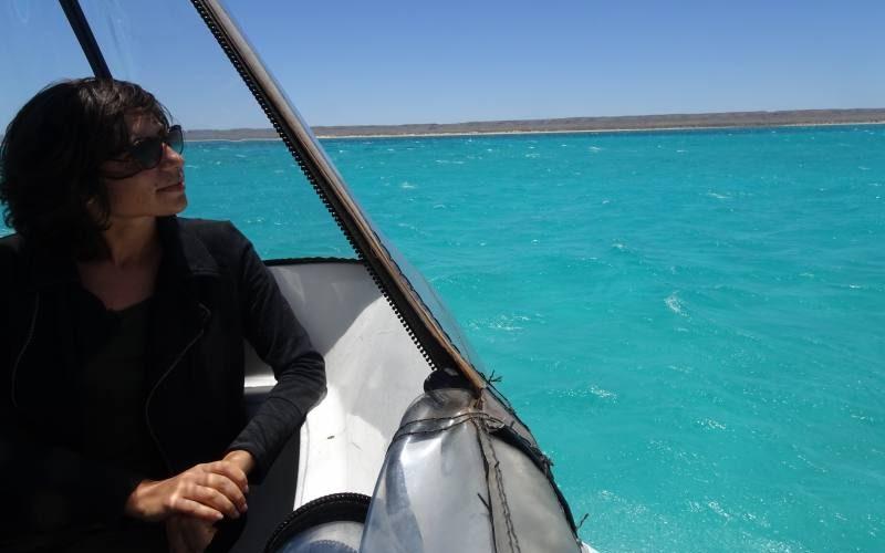 Escursione barriera corallina del Western Australia in barca