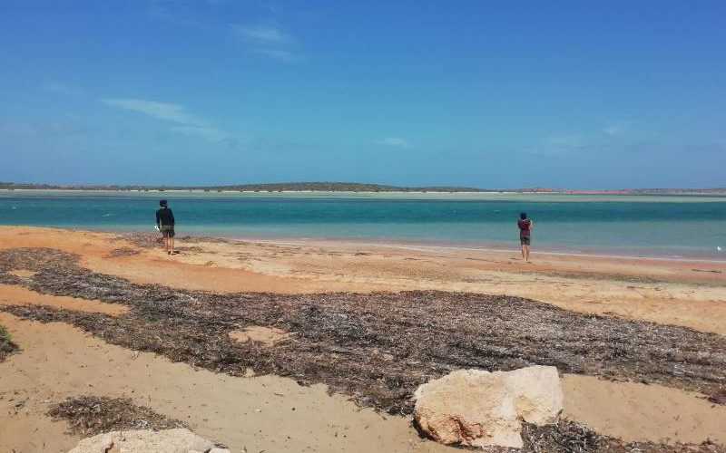 Spiaggia della Big Lagoon nel Parco Nazionale Francois Peron a Shark Bay