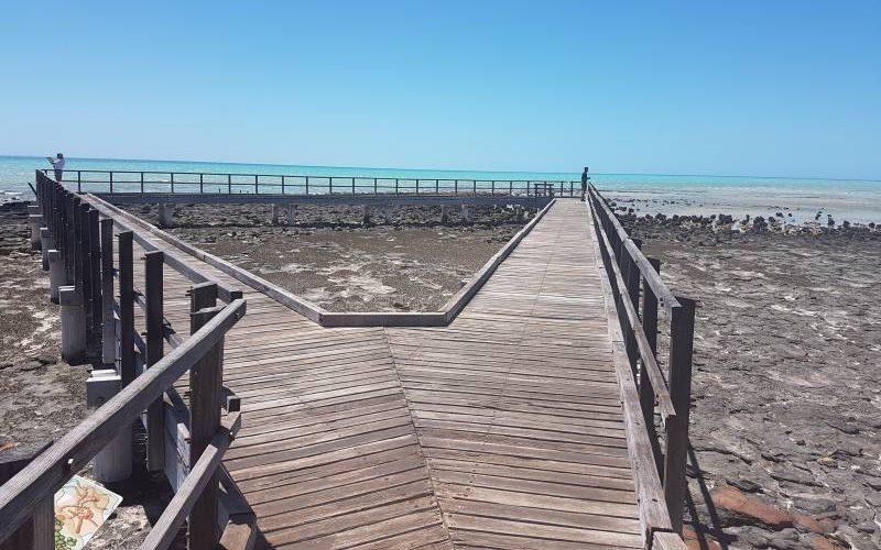 Passerella per vedere gli Stromatoliti di Hamelin Pool a Shark Bay in Western Australia