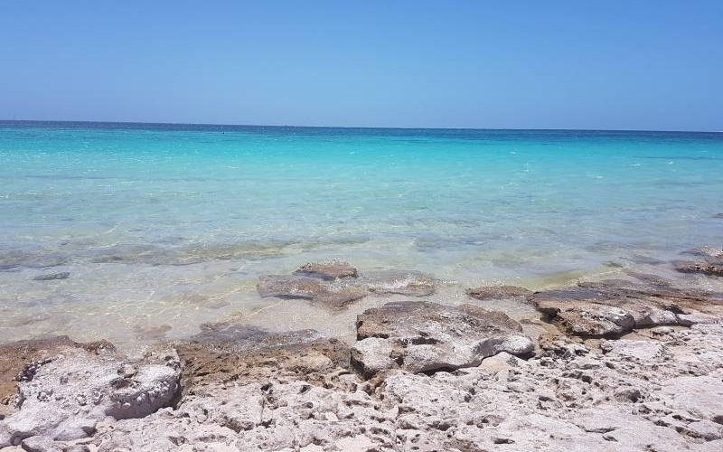 Spiaggia Skeleton Bay con oceano sulla barriera corallina a Coral Bay in Western Australia