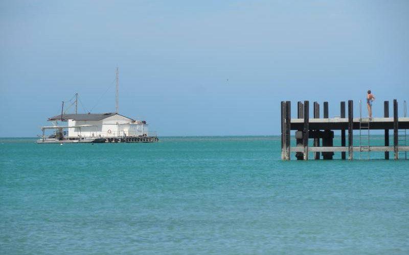 Molo di Monkey Mia a Shark Bay