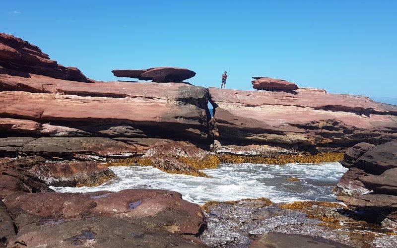 Percorso trekking per Mushroom Rock, la roccia fungo del Parco Nazionale di Kalbarri in Western Australia