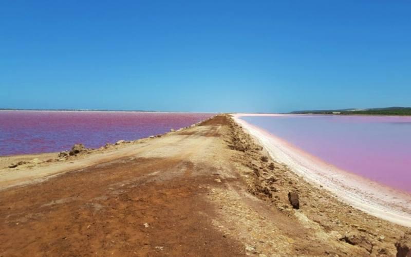 Vista del Pink Lake (Hutt Lagoon), il lago rosa di Port Gregory in Western Australia