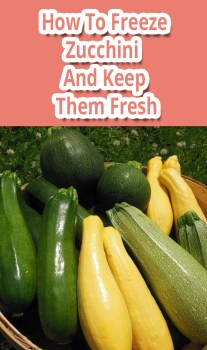 How To Freeze Zucchini And Keep Them Fresh