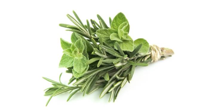 Health Benefits Of Rosemary And Oregano: Can Help Fight Diabetes