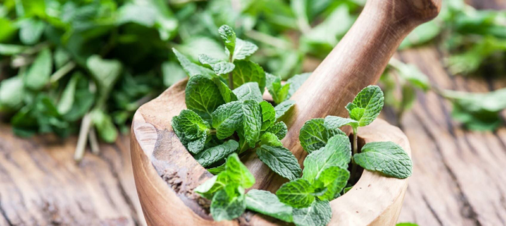 Herbal Oil: Peppermint Oil Benefits And Uses