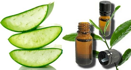 aloe vera gel for dandruff with tea tree oil
