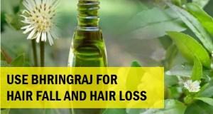 Bhringraj for Hair Loss and Hair Fall 3