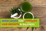 How to Use Neem Leaves and Powder for Dandruff, Hair Growth and Baldness