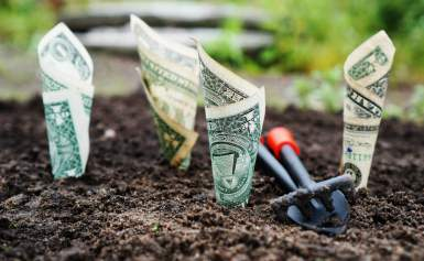 Upwork News: Now Freelancer Need to Spend Money To Bid On Jobs.