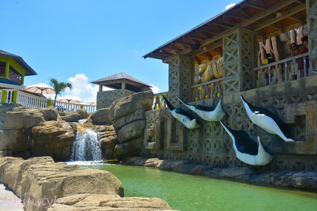 adventure park stingrays