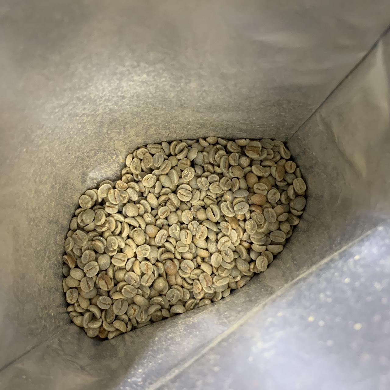グアリロバ農園イエローカトゥカイ生豆