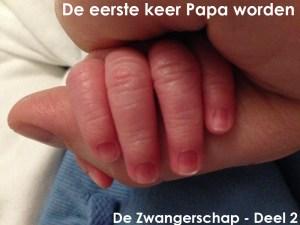 Eerste keer Papa worden – De Zwangerschap Deel 2
