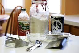 essay ll vinegar and flour