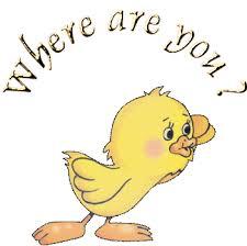 E36 where are you