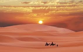 E45 desert