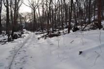 Bear Mountain - 1777E Trail