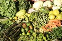 Gemüse vom Hochbeet
