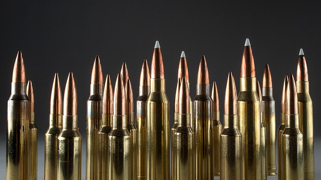 Elección de los mejores calibrres de largo alcance para disparos de precisión