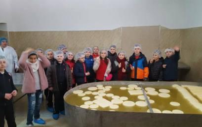 """Në fabrikën e përpunimit të qumështit """"Ermandi"""""""
