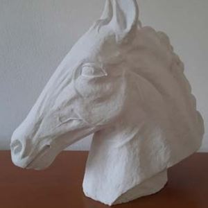 Horse, Adri Sado