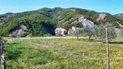 Dorezi trail (Baldushk-Dorezi-Peza) album (6)