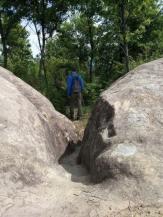 Bride's trail (Stermas-Lunder-Farke) (7)