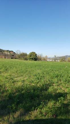 Arbane-Budine-Zhullime-Paper trail (18)