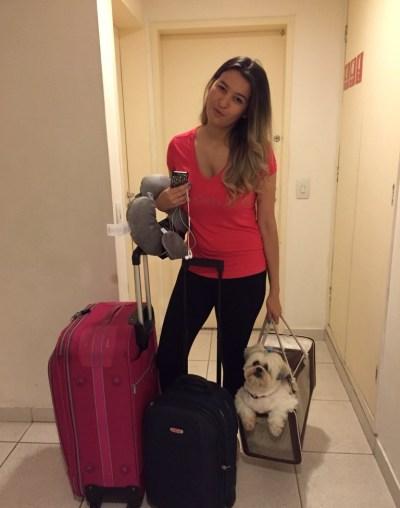 como-viajar-animal-de-estimação-cabine-avião (4)