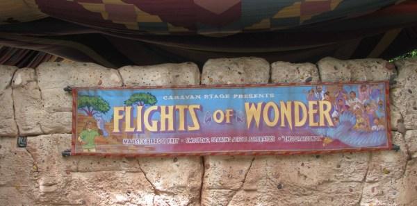 Flights_ Of_ Wonder