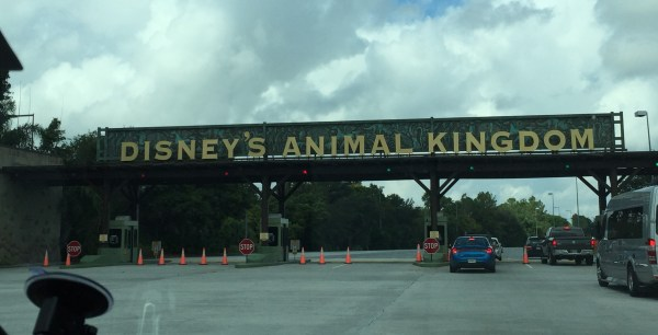 disney_animal_kingdom
