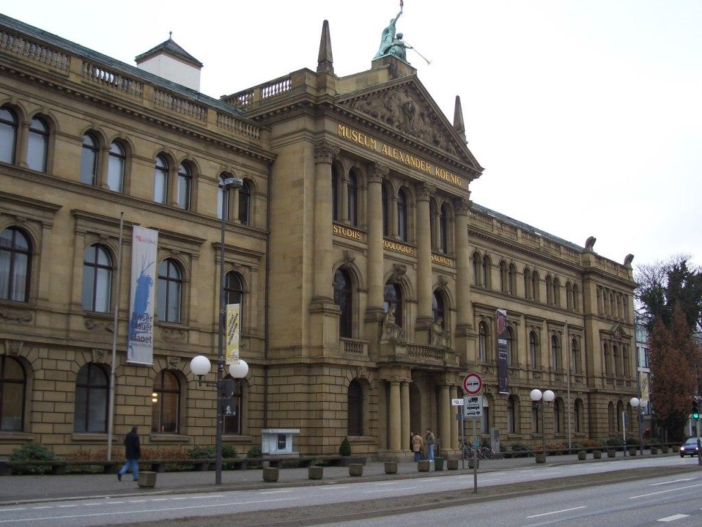 Museu Koenig em Bonn, na Alemanha