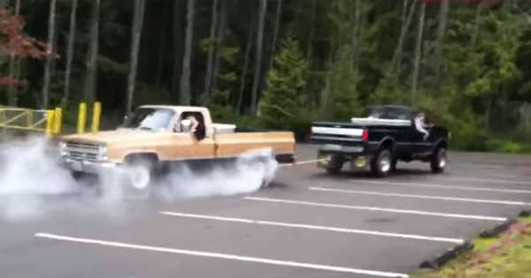 Tug Of War Ford vs Chevy 2